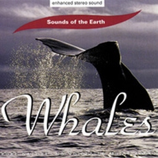 CD Whales