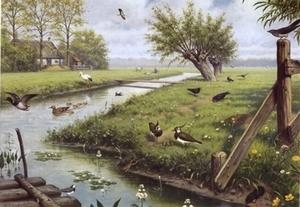 A4 Voorbeeldplaat sp Natuur