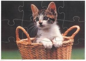 A4 puzzels Kattenkwaad