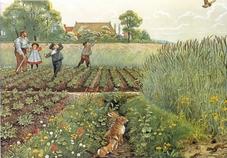 A4 Voorbeeldplaten Het platteland, serie 2