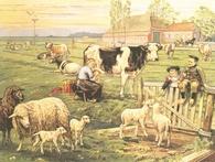 Poster In de Weide