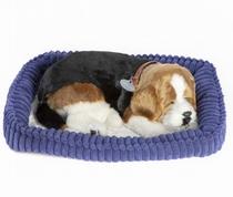 Perfecte hond Beagle