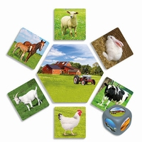Fotokaarten Waar leven de dieren?